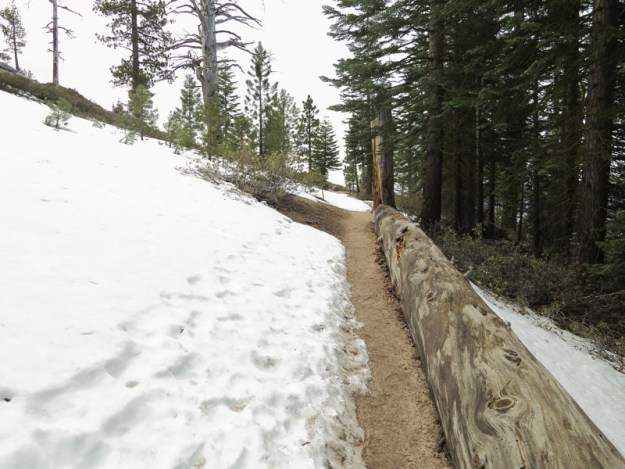 Trail to Yosemite Point