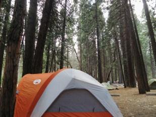 Back at Camp