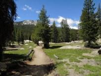 Trail through Meadows