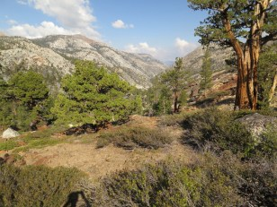 Cathedral Creek Canyon
