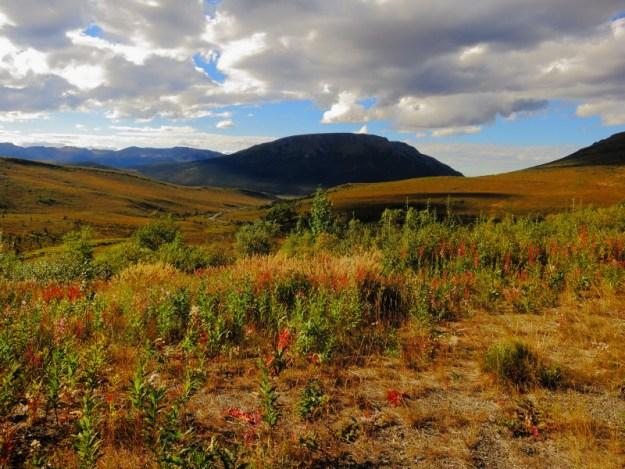 Tundra Hills
