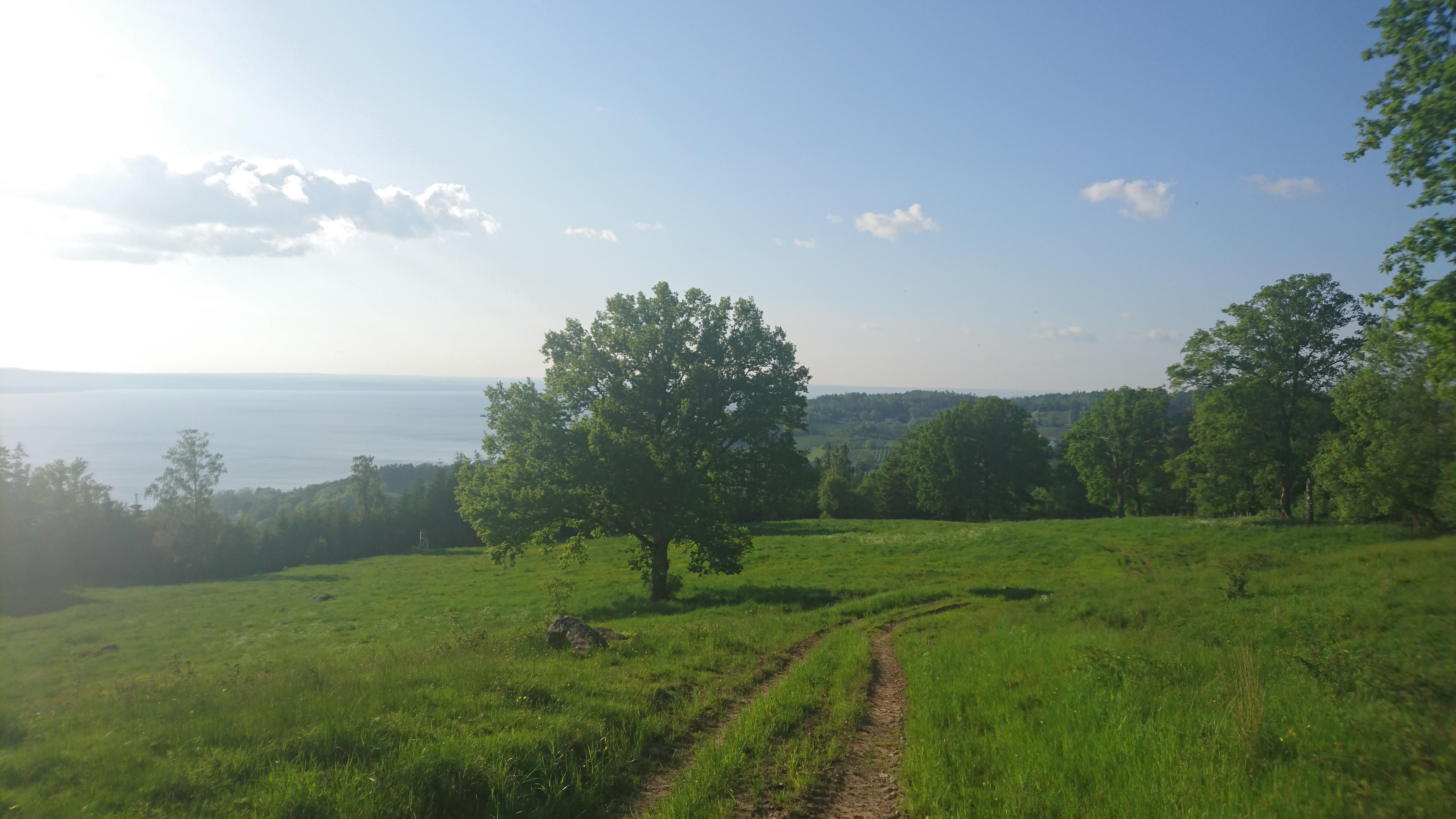 Episk trailupptechlöpning