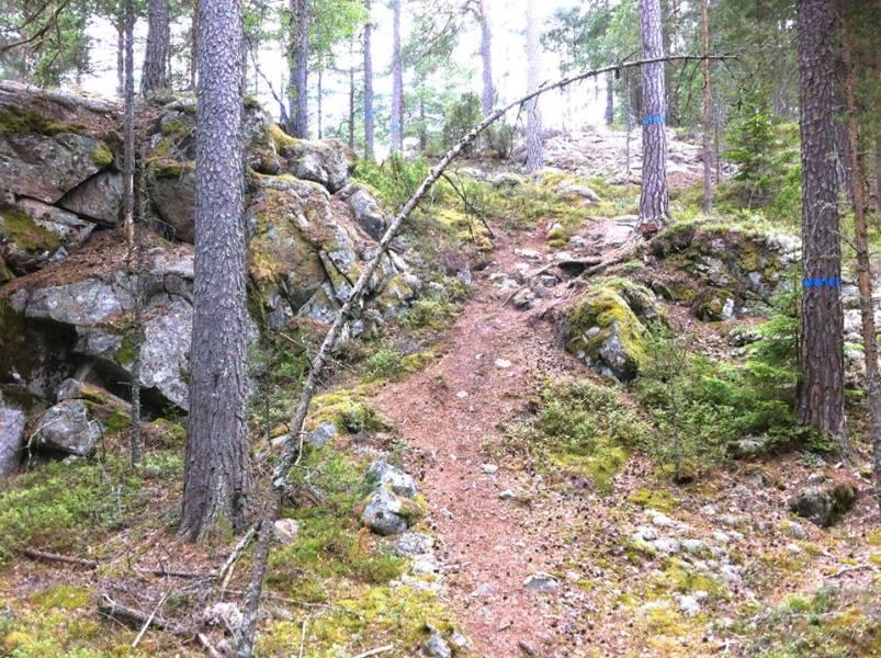 Tiveden Trail5
