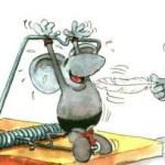 Truyện đọc cho bé: Cái bẫy chuột