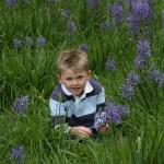 Dạy kỹ năng sống cho trẻ – Phần 5: Các hoạt động ngoài trời