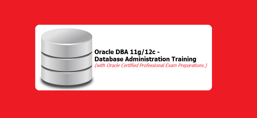 Oracle Database Administration Training with Oracle Certified ...