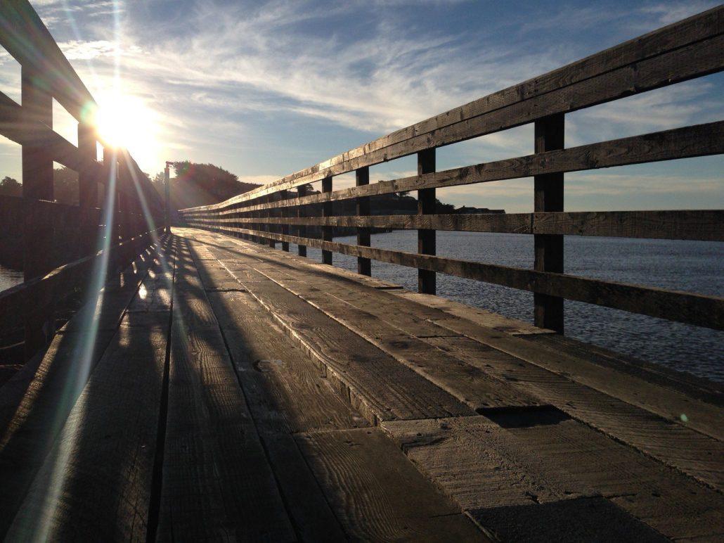 A great run along the coast in Bandon, Oregon.