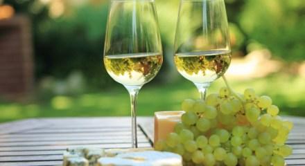 Circuit touristique La route des vins