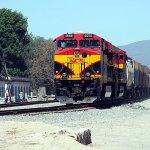 Tren_Ferrocarril_ (1)