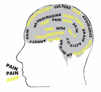 Cerebro.dolor