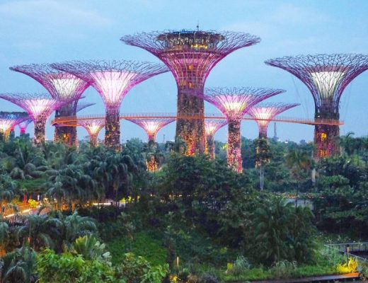 singapour_garden_by_the_bay