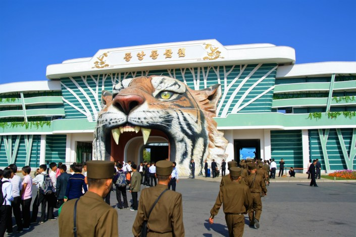A Casual Day Out At The Pyongyang Zoo