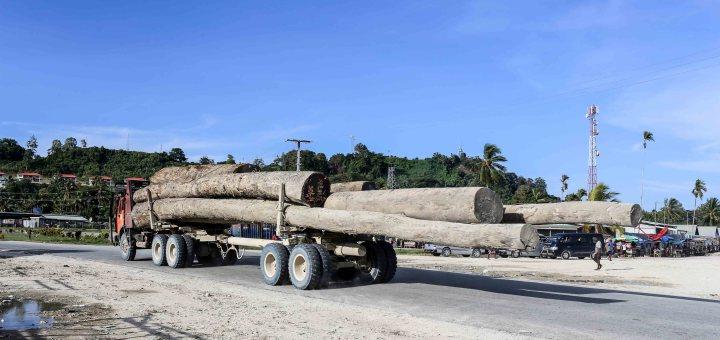 Vanimo thrives on Malaysian logging