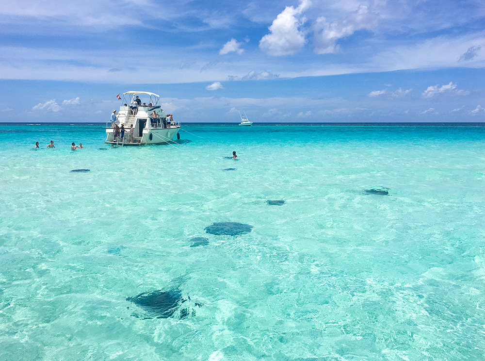 Guide to Grand Cayman   Travel Caffeine Stingray City     This sandbar to which stingrays swarm is one of the coolest  things I ve ever done  It s one of Grand Cayman s most popular points of