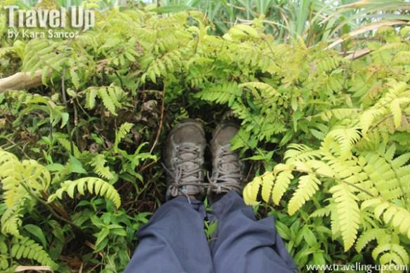 14. mt iraya batanes columbia shoes