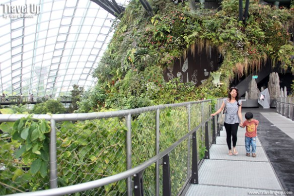 gardens by the bay cloud forest 12