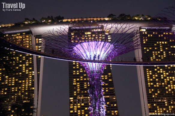 gardens by the bay singapore 04