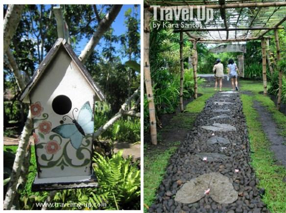 02. la huerta farm baao camarines sur birdcage path