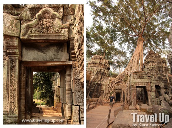 biking cambodia angkor archaelogical park ta prohm trees roots