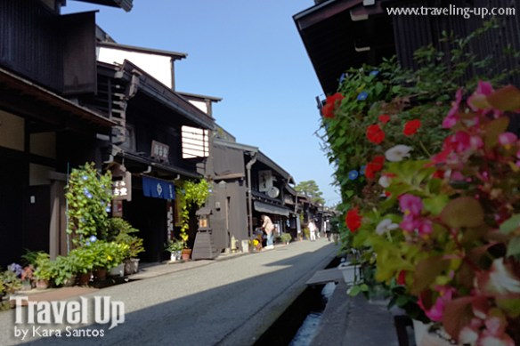 takayama autumn festival old town streets flowers