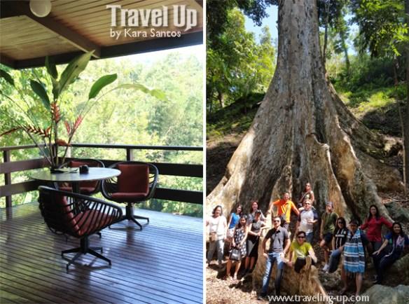 mapawa nature park cagayan de oro group shot heritage tree