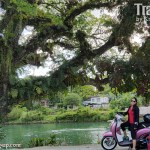 Bohol by Motorcycle (Part 1)