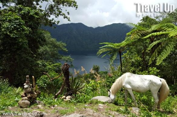 lake holon south cotabato overlooking view horse