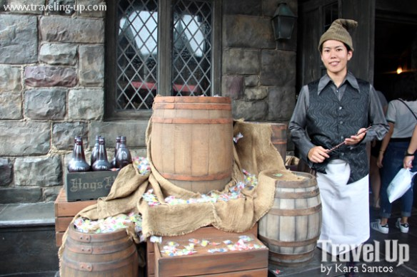 16-wizarding-world-of-harry-potter-universal-studios-japan-hogwarts-castle