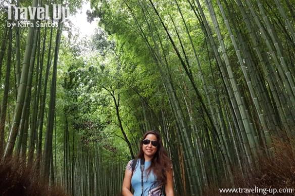 japan-travelup-bamboo-grove-ayarashima-kyoto