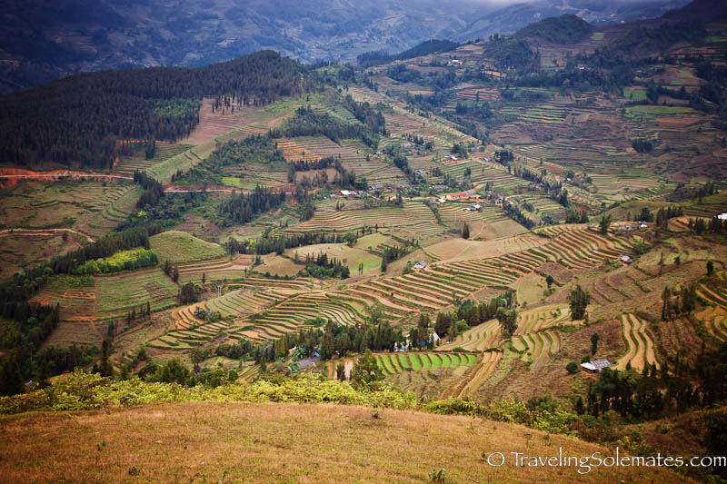 Agricultural Terraces - Trekking in the Hillribe Villages around Bac Ha, Vietnam
