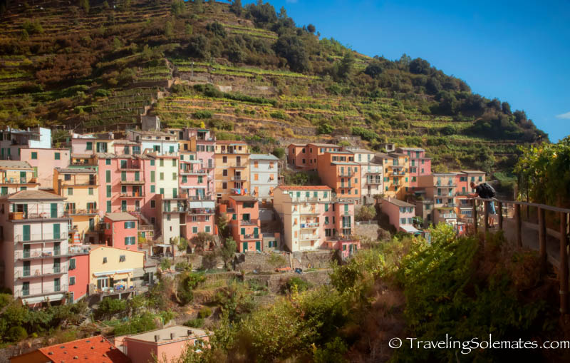 Vineyard Walk in Manorola, Hiking in Cinque Terre, Italy