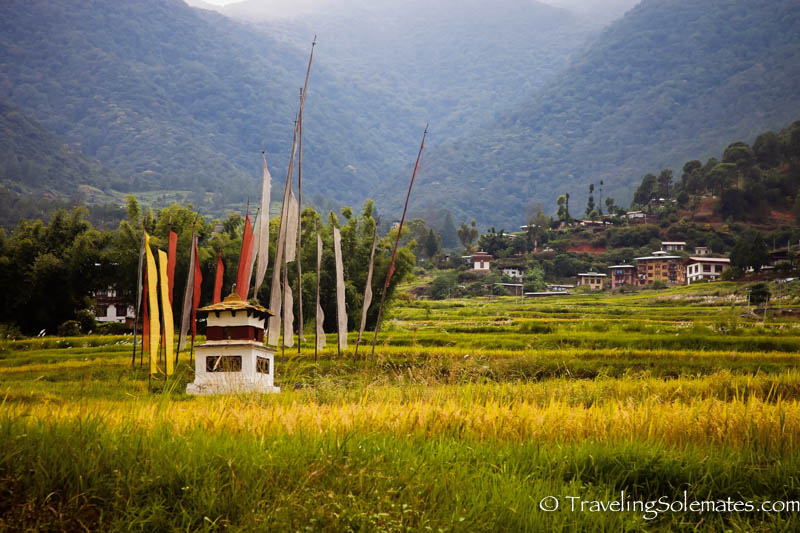 The Hike to Chimi Lakhang, Punakha Valley, Bhutan