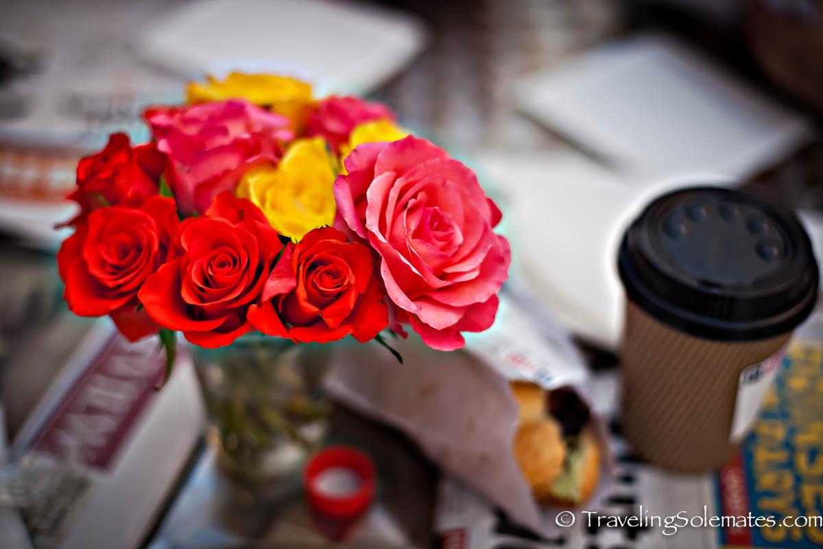 Roses at Cafe in Franschhoek, Winelands,  South Africa