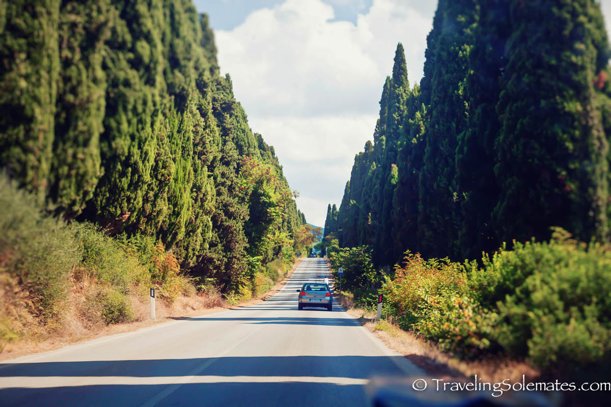 Cypress Avenue, Bolgheri, Tuscany, italy