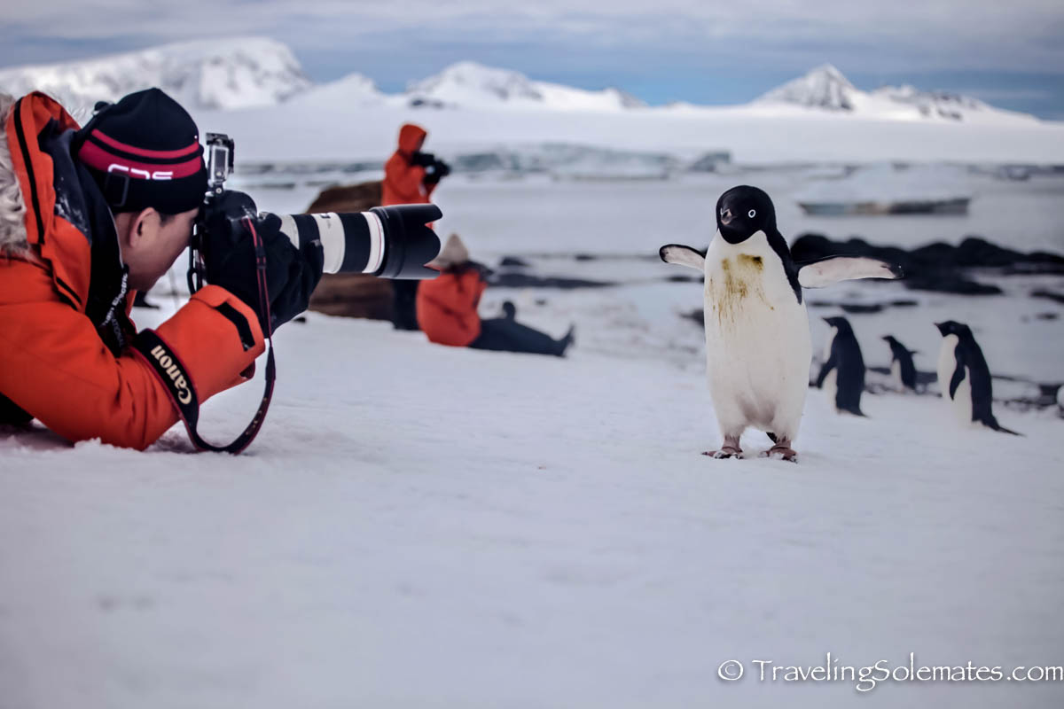 Man taking photo of a penguin in Brown Bluff, Antartica, National Geographic Explorer, Lindblad Expeditions
