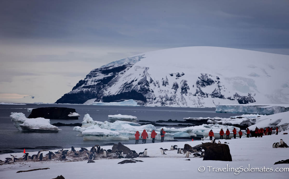 Penguins, Glacier and Peoplein Brown Bluff, Antartica, National Geographic Explorer, Lindblad Expeditions
