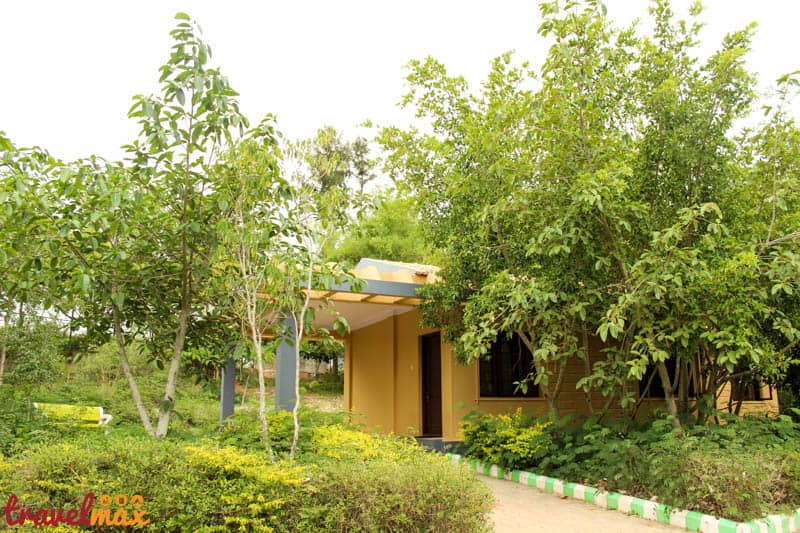 Bandipur Safari Lodges