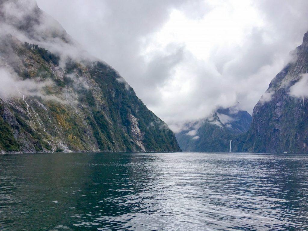 NZ-0799