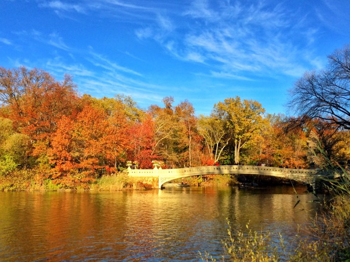 places-to-go-in-nyc-central-park-bridge-fall