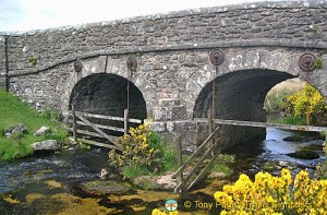 Water Bridge at Dartmoor