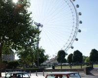 London Sightseeing Tour – The Classic Mini Cooper Way