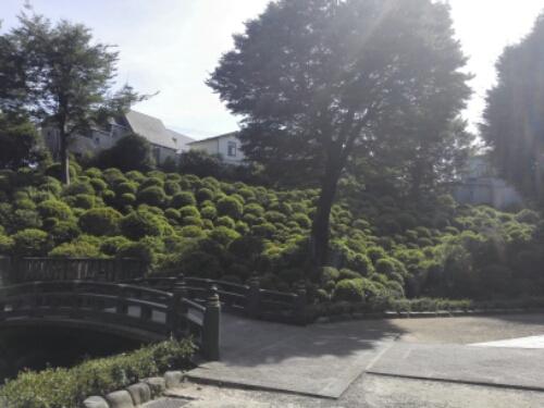 A beautiful garden at Nezu Shrine
