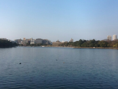 The lake in Ohiri Park