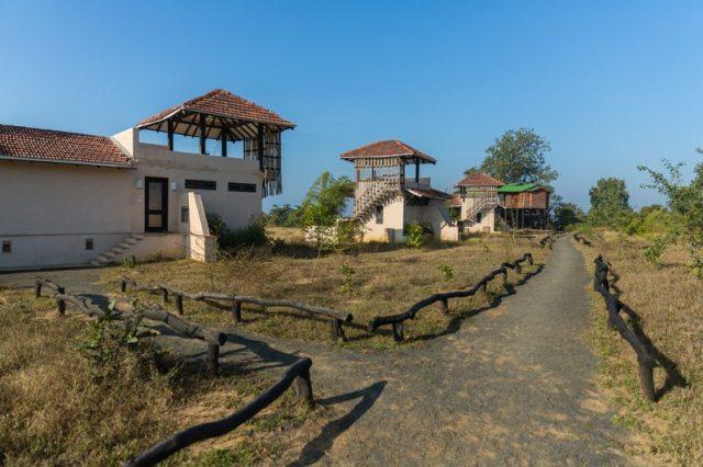 A Walk In The Park - Satpura
