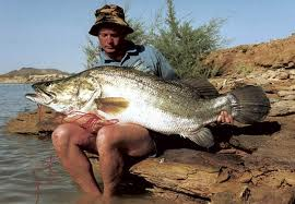 Fishing for Nile Perch