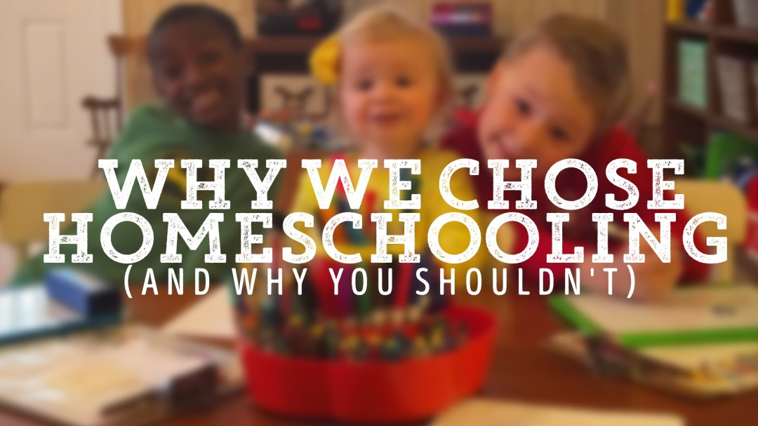 WHY WE CHOSE HOMESCHOOLING