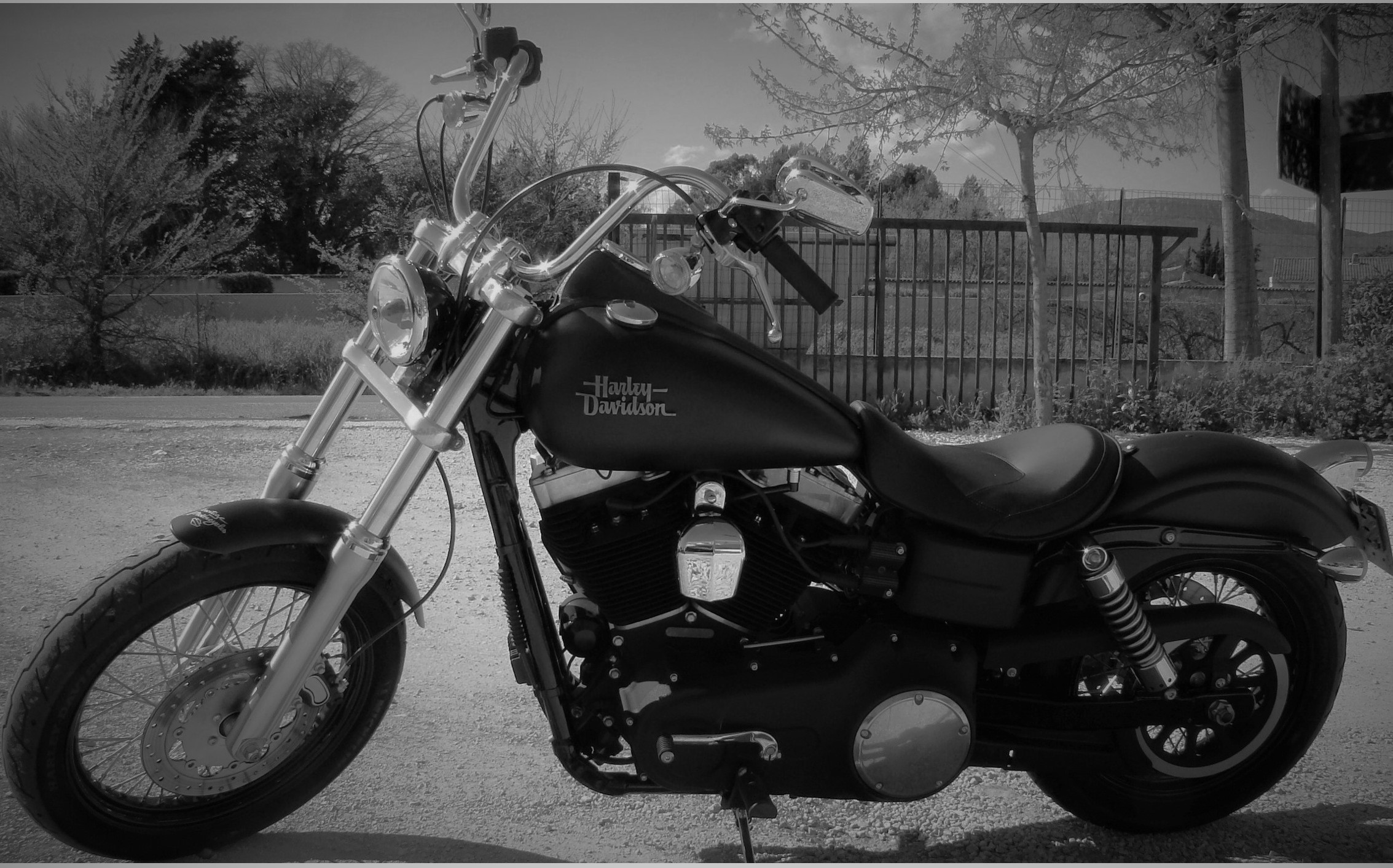 HARLEY DAVIDSON - STREET BOB - modification et customissation TRC MOTO A CUERS DANS LE VAR 83