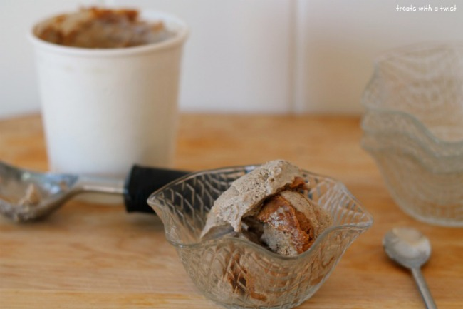 Peanut Butter Swirl Chia Seed Ice Cream (treatswithatwist.com)