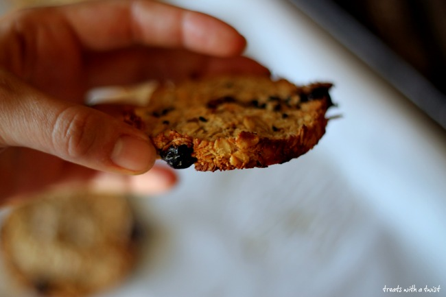 Simple Oat and Cherry Breakfast Cookies (gluten free, vegan) (treatswithatwist.com)