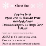 Circuit 1 holiday workout (treatswithatwist.com)